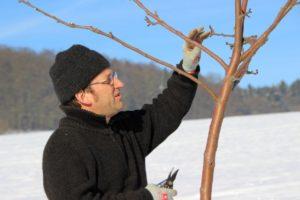 Baumschnitt- Schulung mit Karsten Kutzner